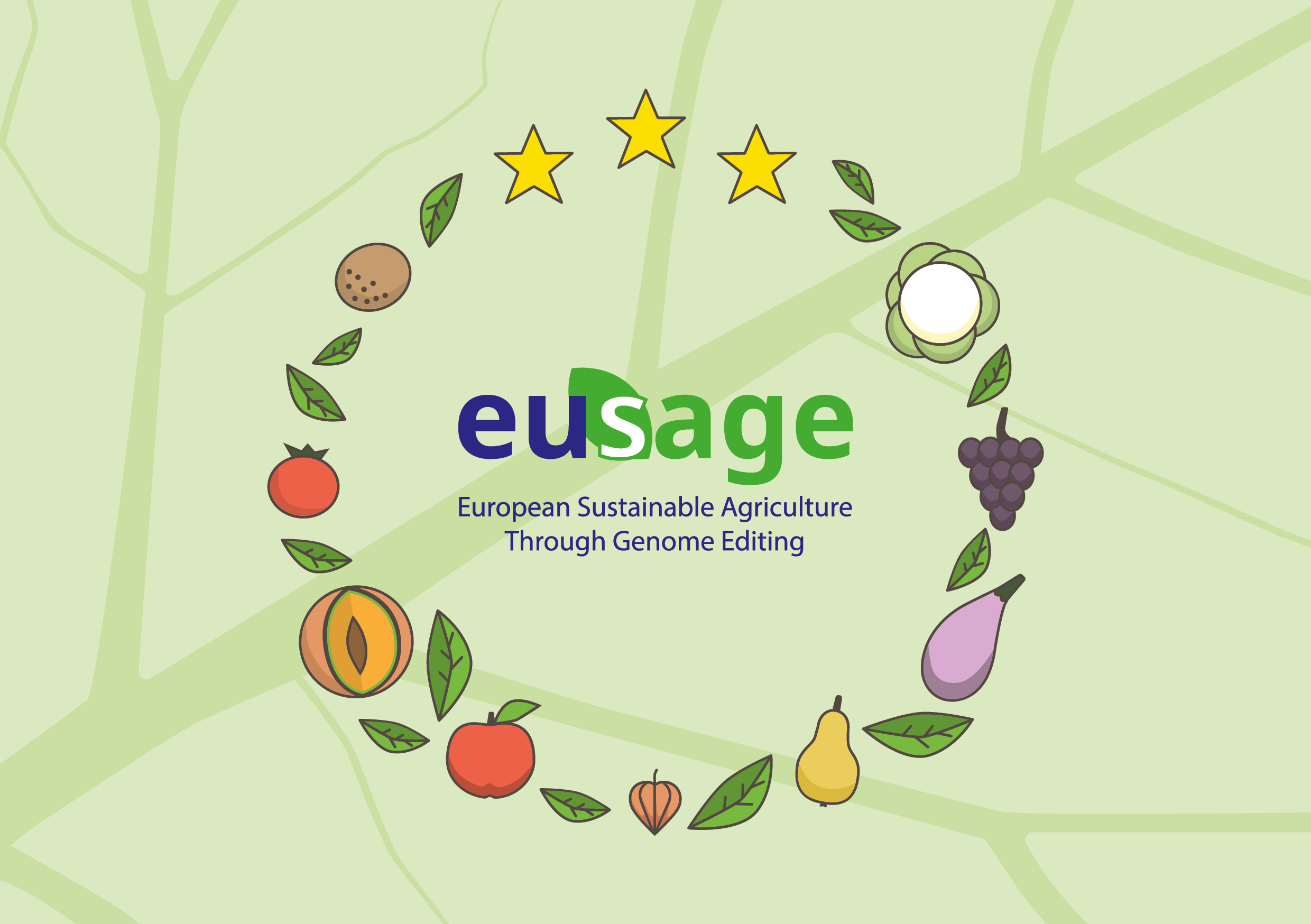 European Commission study finds that 2001 GMO needs adaptation to scientific and technological progress.